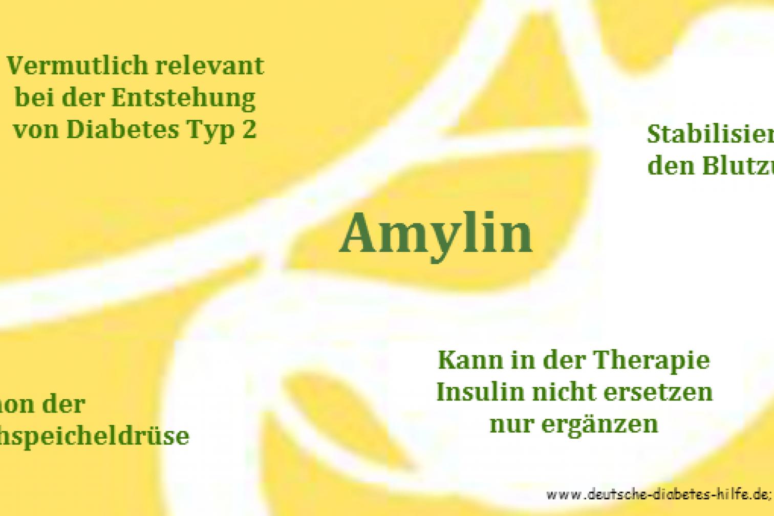Amylin Schaubild