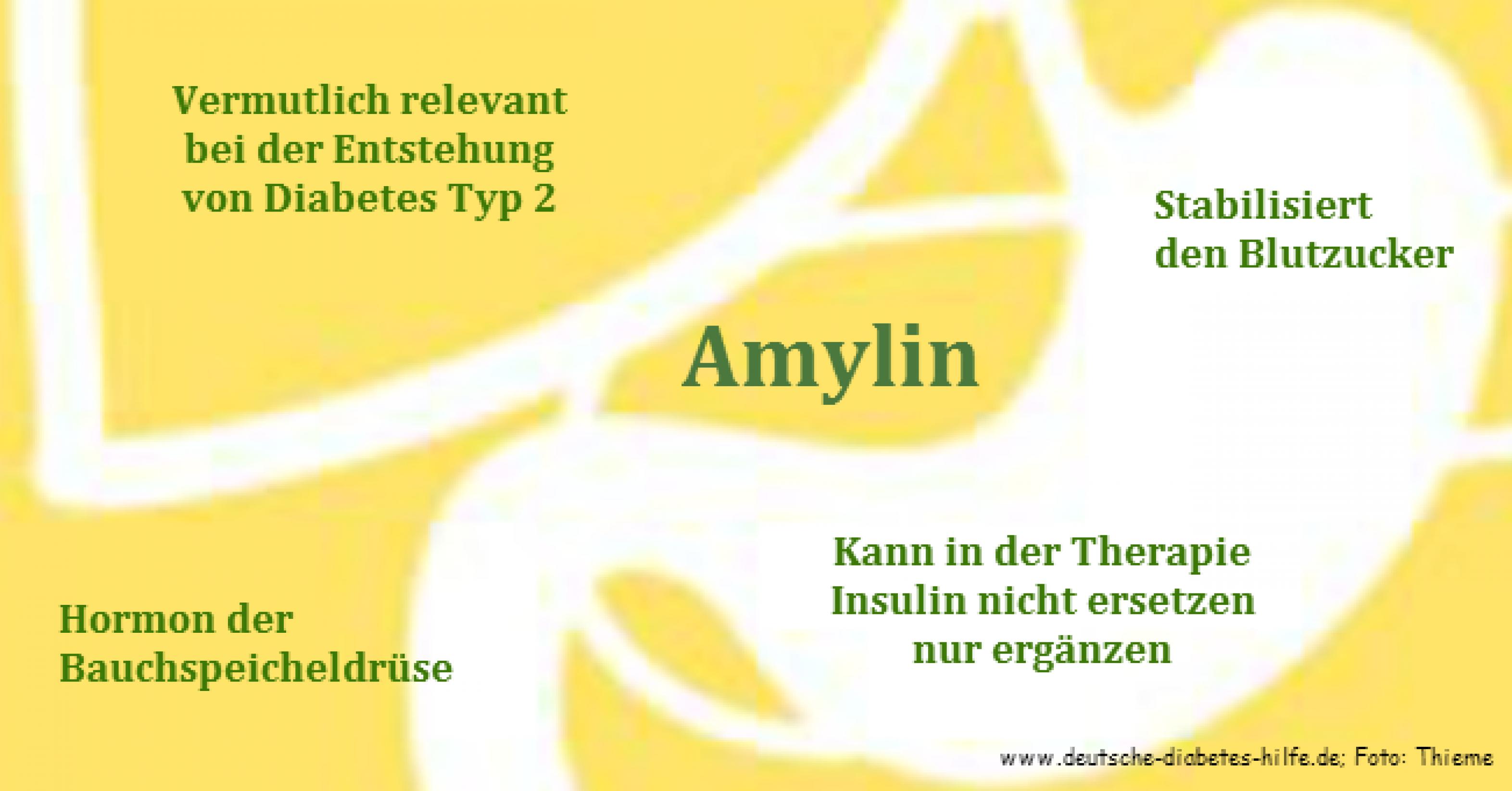 Amylin | diabetesDE - Deutsche Diabetes-Hilfe