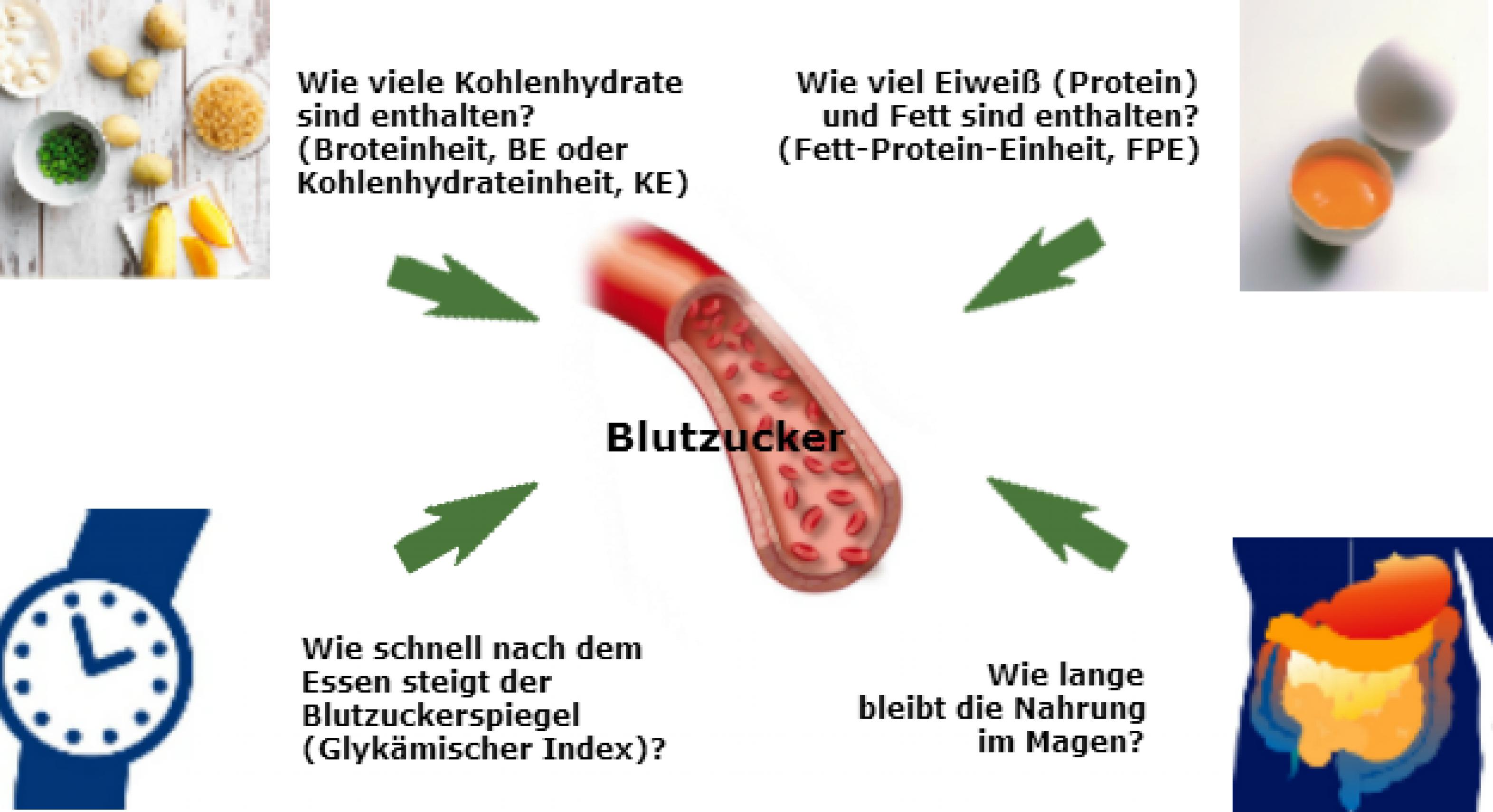 Blutzucker-Fragen-Grafik