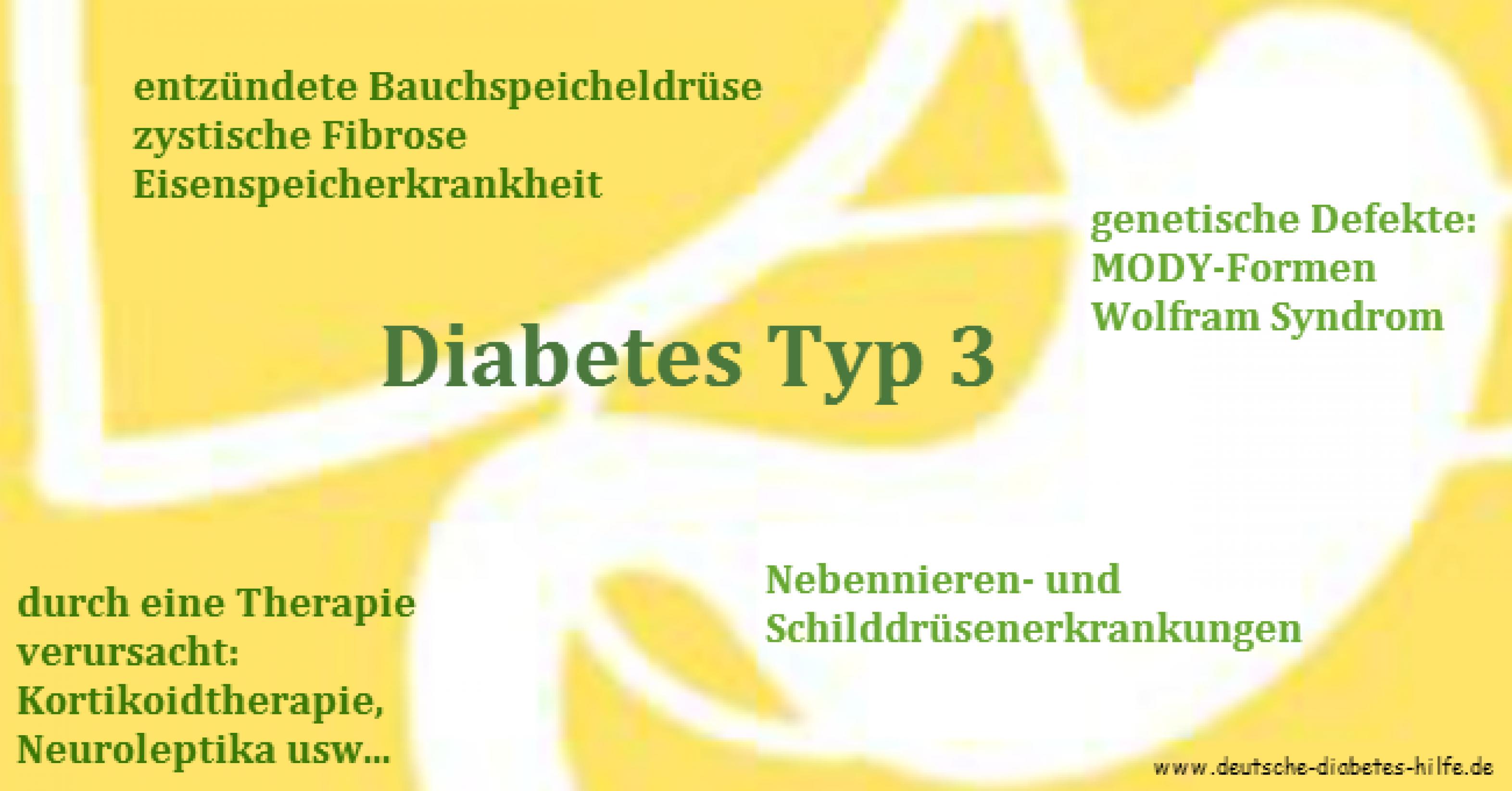 Diabetes Typ 3 Schaubild
