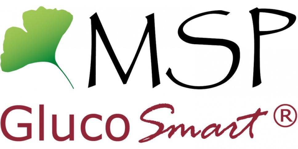 Logo MSP bodmann GmbH Förderer 2019